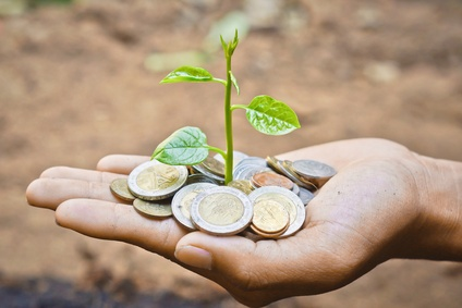 hand holding a tree growing on coins