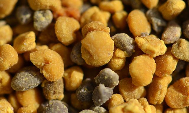 Pelotes de pollen, comme celles que l'on peut consommer chez Famille Mary