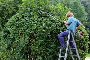 landscape-gardener-409147_1280