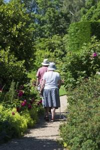 elderly-couple-829305_960_720